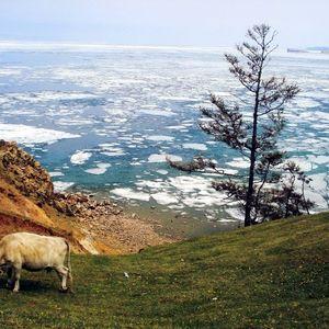 le Cap Khoboï au lac Baïkal