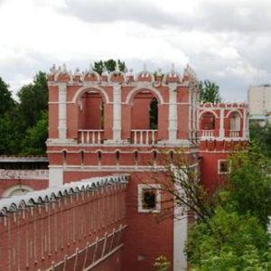 Monastère Donskoï à Moscou