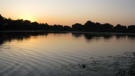 La Rivière Cheksna de la région de Vologda